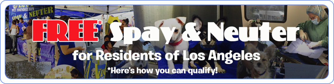 The Lucy Pet Foundation